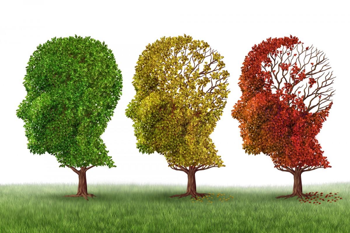 New Alzheimer's Breakthrough