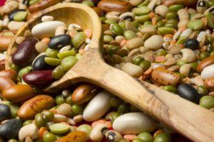 flygyal-legumes